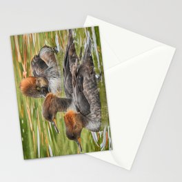 Common Merganser Trio Stationery Cards