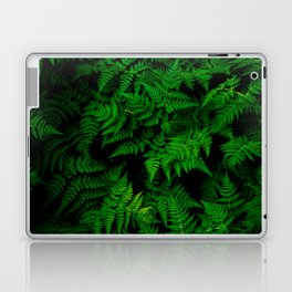Deep Forest Ferns Laptop & iPad Skin