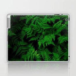 Deep Forest Ferns Laptop & iPad Skin