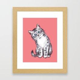 Little Kitten Framed Art Print