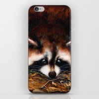raccoon iPhone & iPod Skins featuring Raccoon by Patrizia Ambrosini