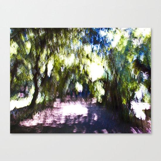 Boboli Gardens Canvas Print