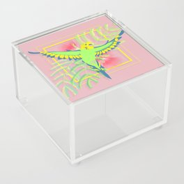 Raster Acrylic Box