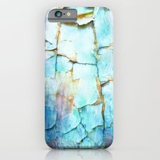 Beauty In Decay iPhone 6 Slim Case
