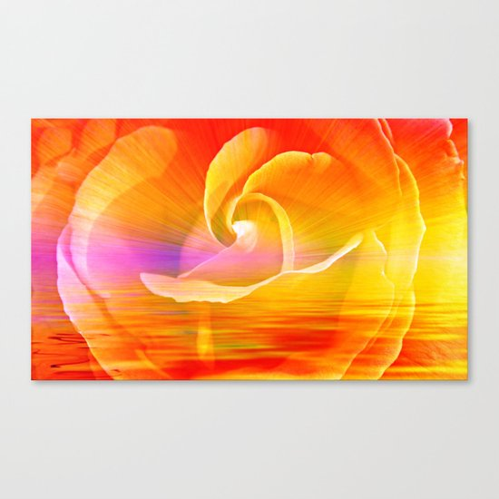 Sunset Rose Abstract Canvas Print