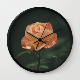 Knockout Rose Wall Clock