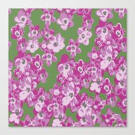 Pink Saxifraga floral Canvas Print