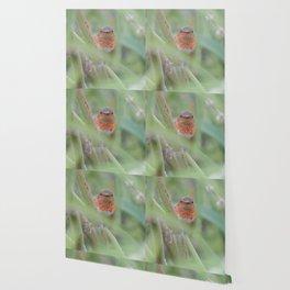 An Allen's Hummingbird Amid Mexican Sage Wallpaper