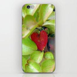 Heart-shaped Leaf iPhone Skin