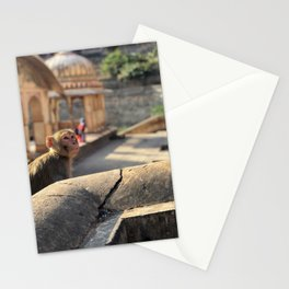Basking in the Sun at the Monkey Temple Stationery Cards