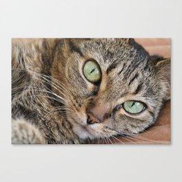 Big Green Eyes Canvas Print