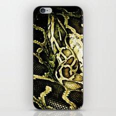 Ssssnake iPhone & iPod Skin