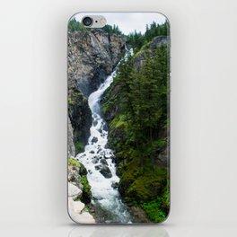 Woodbine Falls iPhone Skin