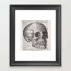 Latin Skull Framed Art Print