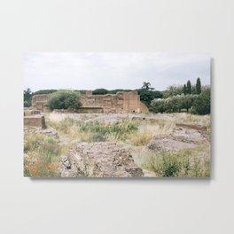rome, v Metal Print