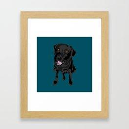 Black Labrador Framed Art Print