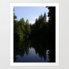Nature reflecting itself Art Print
