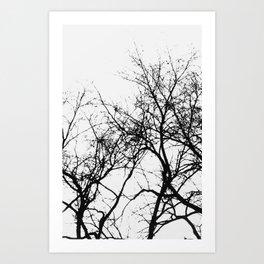 Trees Pt. 2 Art Print
