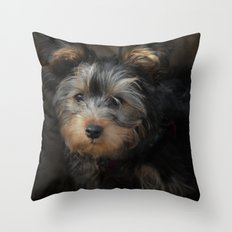 Yorkshire Terrier Puppy Portrait Throw Pillow