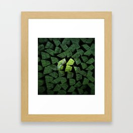 The Power Of The Tennisball Framed Art Print