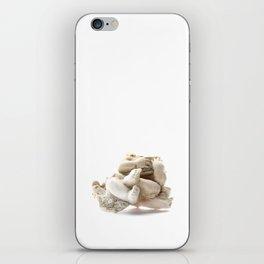 Broken Angel  iPhone Skin
