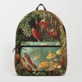 Ernst Haeckel Muscinae Microscopic Landscape Backpack