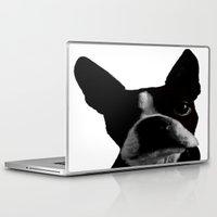 boston terrier Laptop & iPad Skins featuring Boston Terrier by Noah Cheek