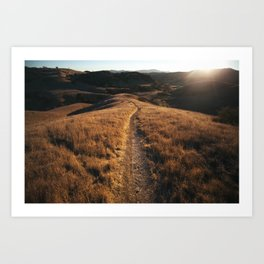 Straight and Narrow Art Print