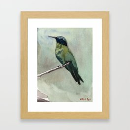 Hummingbird Sitting on a Branch Framed Art Print