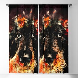 wire haired dachshund dog ws Blackout Curtain