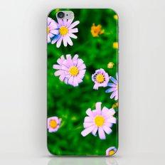 Be My Purple Valentine - Daisy Flowers iPhone & iPod Skin