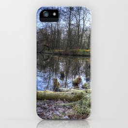 Frosty Morning Pond iPhone Case
