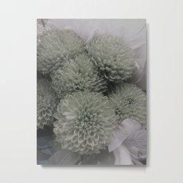 grey puff Metal Print