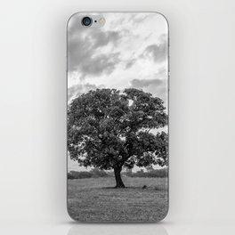 Nasik iPhone Skin