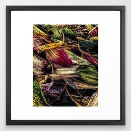 Dried Flower Petals Framed Art Print