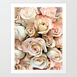 Delicate Peach Roses Art Print