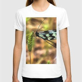 Lacewing T-shirt