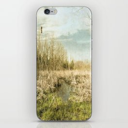 Peace and Solitude.   iPhone Skin