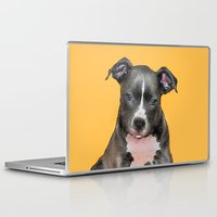 pitbull Laptop & iPad Skins featuring Pitbull puppy by ritmo boxer designs