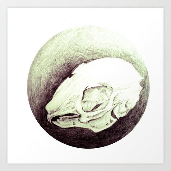 rabbitskull Art Print
