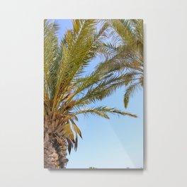 Paradise Metal Print