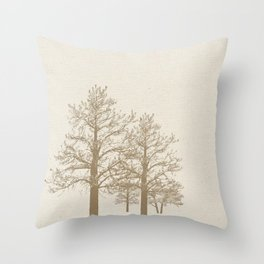 Phases 2012-13 Throw Pillow