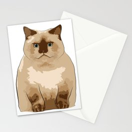 Fluffy CAT Stationery Cards