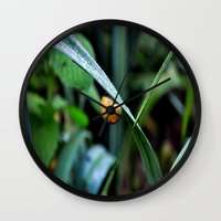snail Wall Clocks featuring Snail by  Agostino Lo Coco