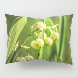 Craving to a beauty Pillow Sham