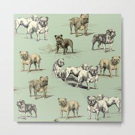 ENGLISH BULLDOGS - pastel green  Metal Print