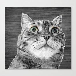 Big Eyed Cat B&W Canvas Print