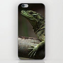 Sailfin lizard iPhone Skin