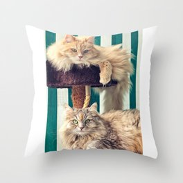 Siberian cats on the cat tree Throw Pillow