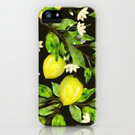 The Lemon Orchard  iPhone Case